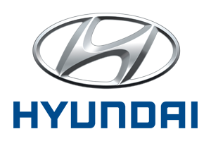 Sell your Hyundai York